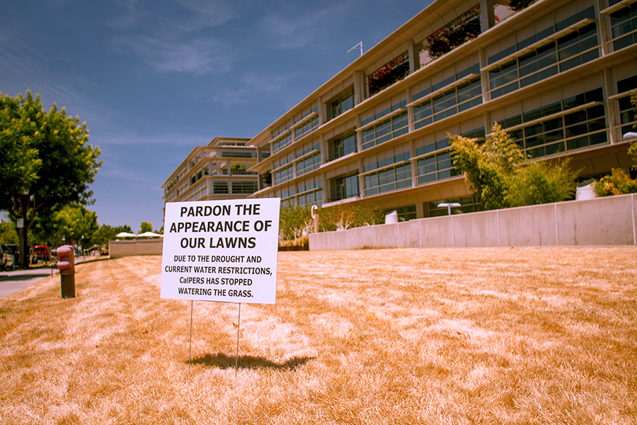 "Photo of a sign that reads, ""Pardon The Appearance of Our Lawns"
