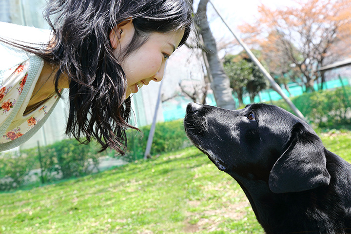 black-haired woman looks down at dog from upper left, black lab dog looks up at her from lower right. Both very close, noses inches apart