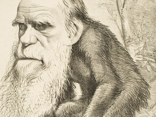 Confronting the fact of evolution