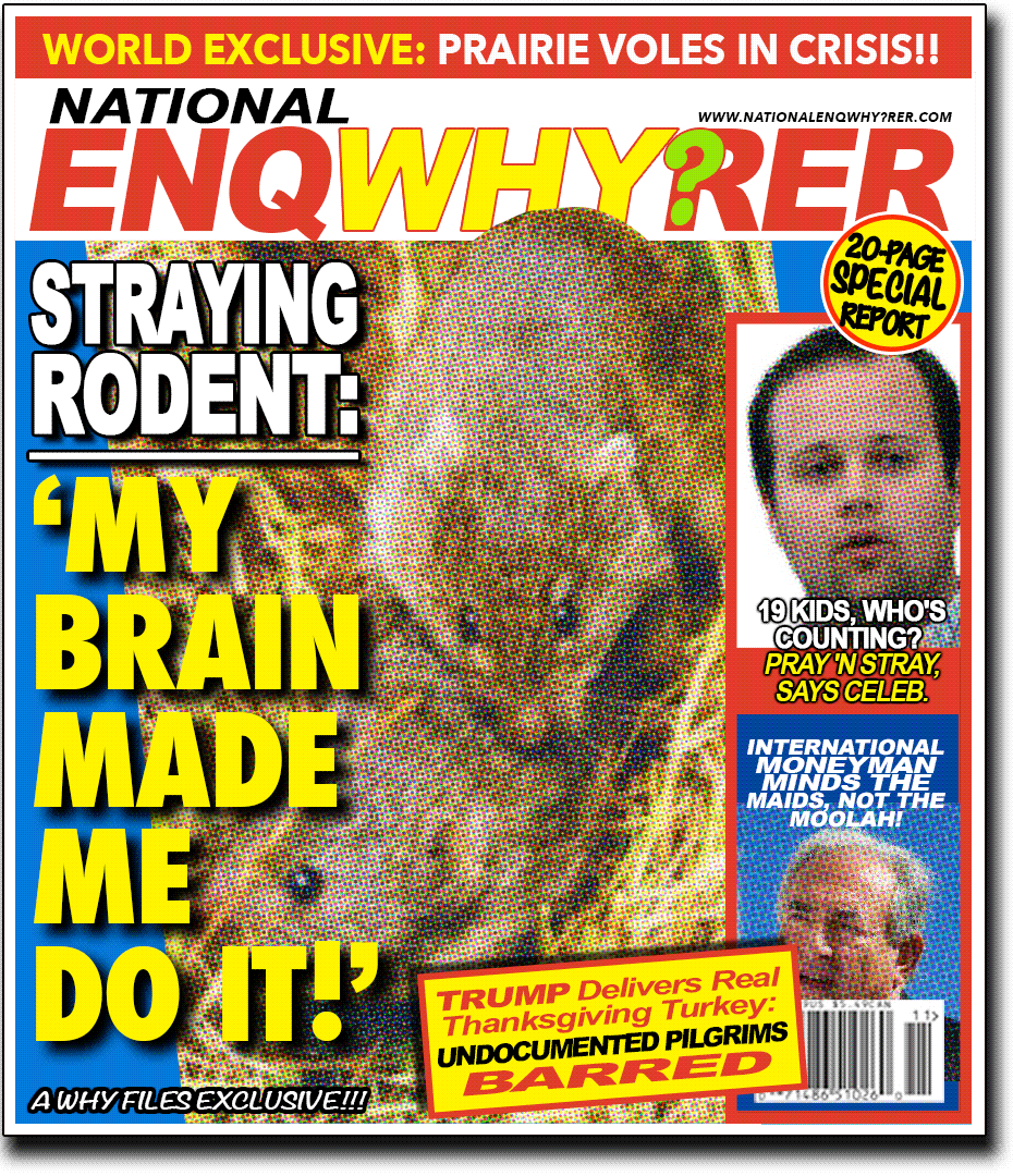 tabloid cover, Why Files style, reads: 'Straying rodent: My Brain made me do it!!